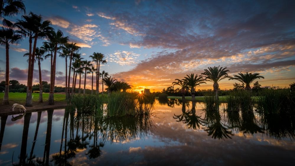 T-Golf Poniente Mallorca Calvia