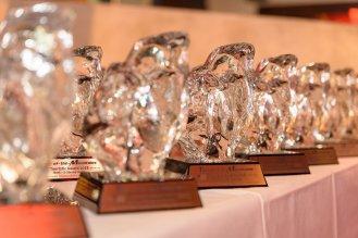 TOTM TA2019 - Awards